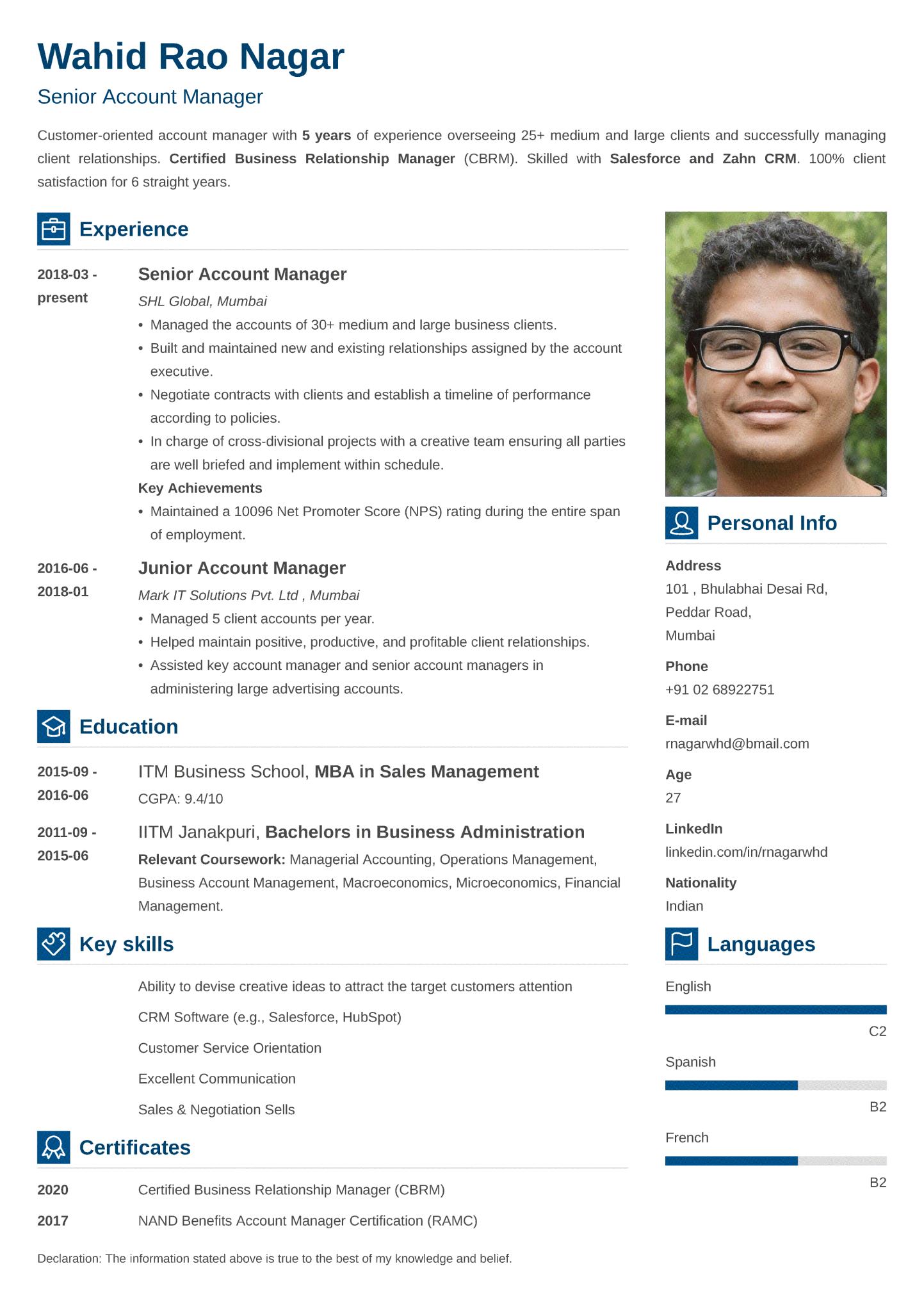 Vibes Indian CV Format made with ResumeLab CV maker