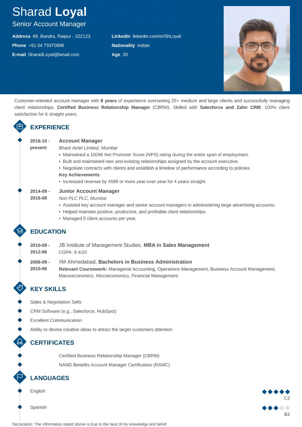 Diamond Indian CV Template