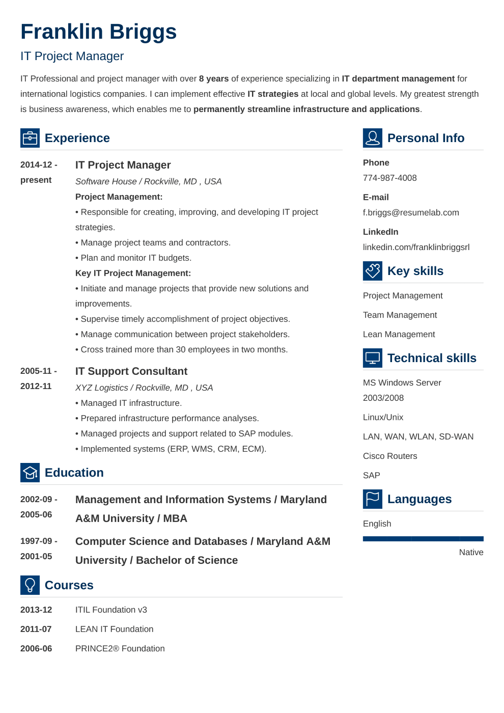 Vibes resume template