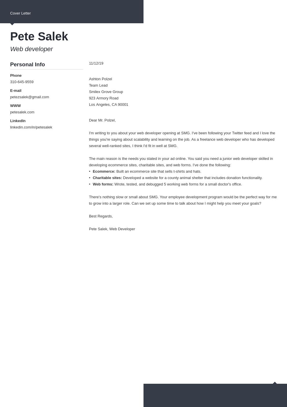cover letter examples web developer template modern