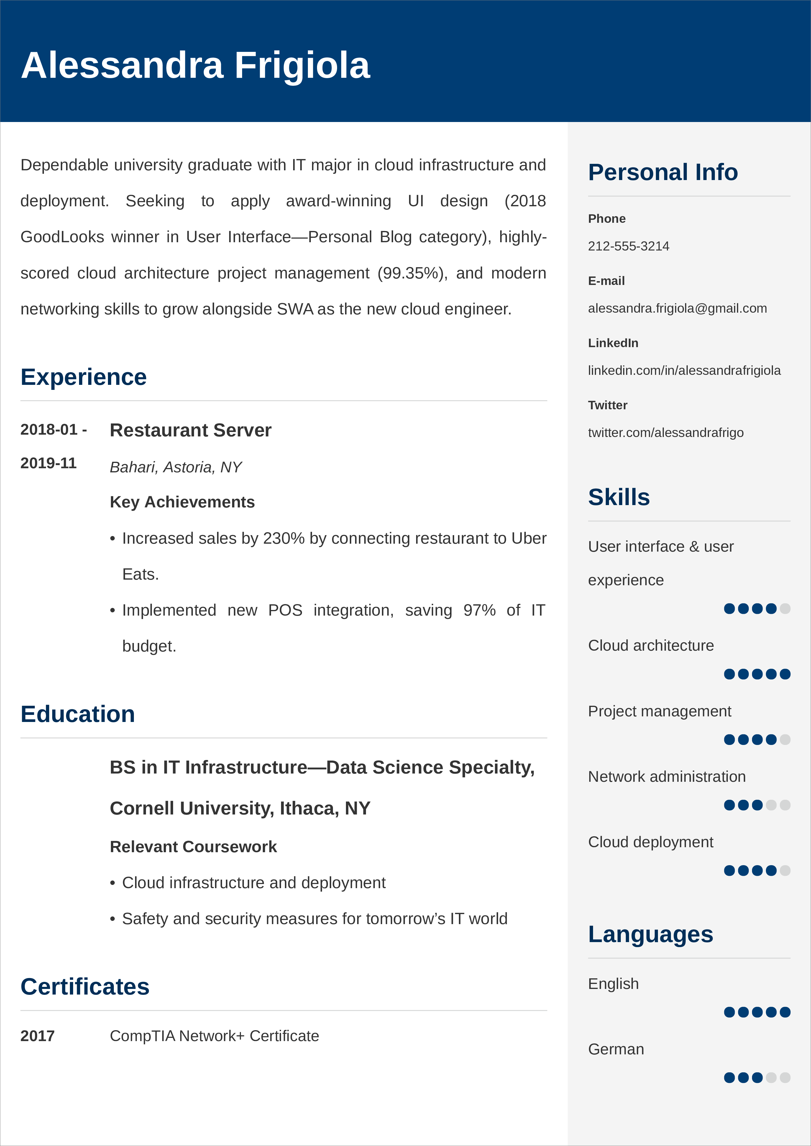 Entry Level Resume Examples Template Tips