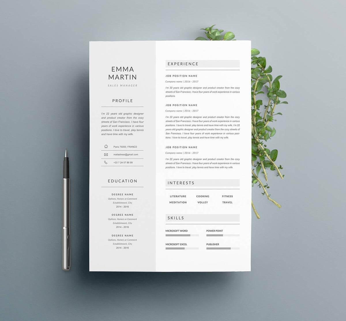 spare resume template