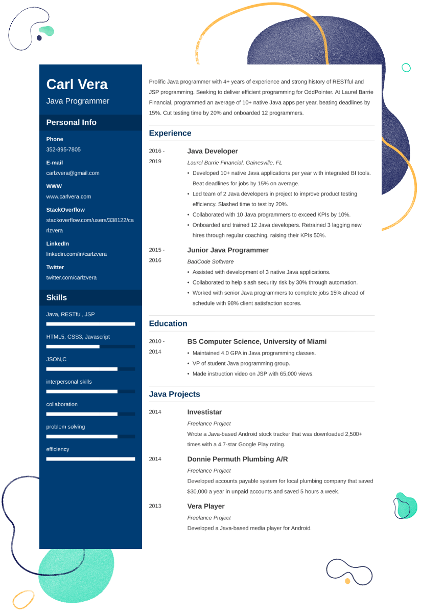 Programmer Resume Examples And 25 Writing Tips